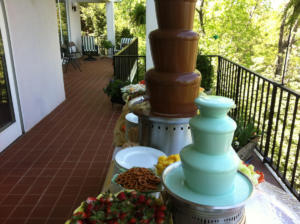Chocolate Fountains 2